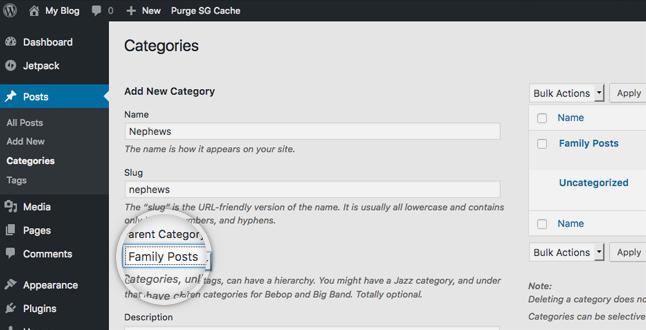 sử dụng category trong wordpress